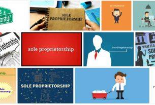 Sole Proprietorship 1